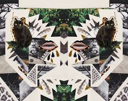 ayahuasca cat collage art design vasare nar design artist trippy