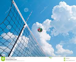 volleyball net in the backyard stock photo image 43179858