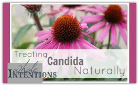 treating candida naturally whole intentions