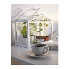 Windowsill Greenhouse Thoughts On Ikea Socker Mini Greenhouse The Planted Tank Forum