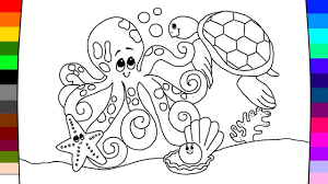 how to coloring turtle with octopus youtube