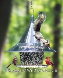 squirrel proof hanging bird feeder