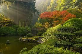 winter autumn japan peace bridge japanese pond rock sunray fall