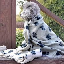 Comfortable Dog Best Dog Bed Blanket Reviews U2013 10 Most Comfortable Dog Blankets