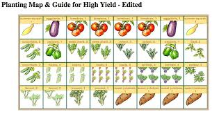 impressive decoration square foot vegetable garden layout tavia u0027s