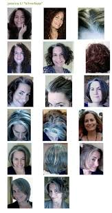 images of grey hair in transisition got gray jessica topper author