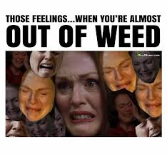 Marijuana Overdose Meme - run out of weed memes funny no more marijuana humor when out