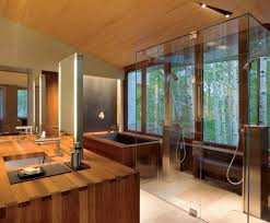 neat bathroom ideas neat modern bathroom with spa layout also frameless shower door