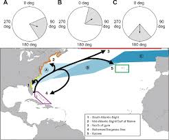 Map Of Southeast Florida by Simulating Transoceanic Migrations Of Young Loggerhead Sea Turtles