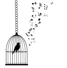 uccelli in gabbia carta da parati vettore uccelli in gabbia con le note musicali