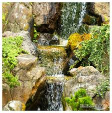 Botanical Gardens Golden Gate Park by San Francisco Golden Gate Park Aerial Photography U0026 Drone Services