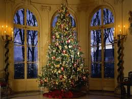 The Best Decorated Tree Best Decorated Trees Or By Decorated Trees