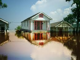 Global Houses Local Solution To A Global Flooding Problem Water Institute