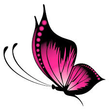 pink butterfly stickers png