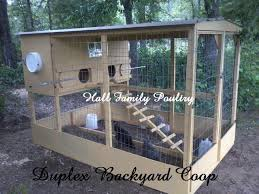 backyard chicken coop designs interiors design