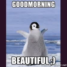Cute Good Morning Meme - goodmorning beautiful cute penguin meme generator