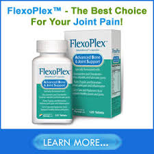 best joint supplement joint support