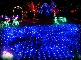 illuminating fort collins where to view lights