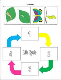 the very hungry caterpillar unit k 3 lessons links printables
