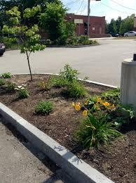 Urban Garden Center Maine Urban Herbal Gardening Center For Wisdom U0027s Women