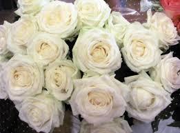 Wallpaper mawar bunga bunga putih bunga pengemasan 2130x1580