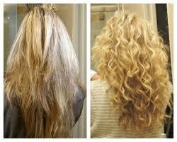 benefits of egg yolks u0026 whites for the hair u0026 scalp mane dish
