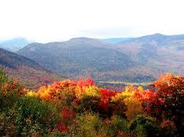rainbows of autumn color innovation simple