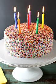 cake girl vanilla bean birthday cake girl versus dough