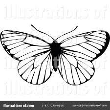 butterfly clipart 1113237 illustration by prawny vintage