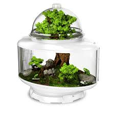 reptile terrarium biobubble pets