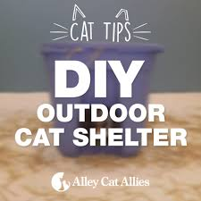 Outdoor Cat Condo Plans by Alley Cat Allies Feral Cat Shelter Options Gallery