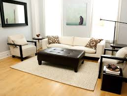 area rug in living room what is jute and why does it make such great area rugs