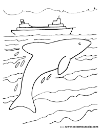 diving dolphin coloring page create a printout or activity