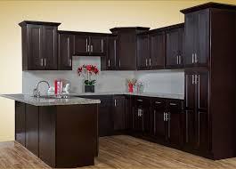 Espresso Cabinets Kitchen Walnut Ridge Cabinetry Shaker Espresso Kitchen Cabinet Company