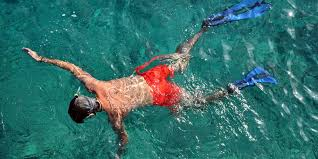 Indiana snorkeling images Spea in the caribbean summer abroad spea abroad student jpg