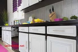 peindre porte cuisine unique meuble cuisine a peindre unique design de maison