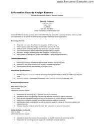 Best Business Analyst Resumes by Download Information Security Resume Haadyaooverbayresort Com