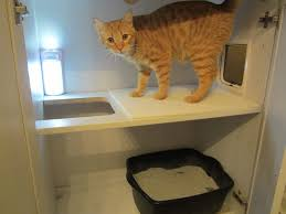 diy hidden litter box we got rid of the trails and ugly babyng