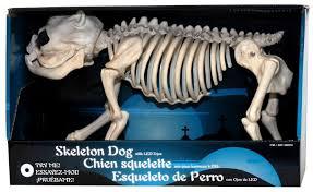 halloween dog skeleton 12