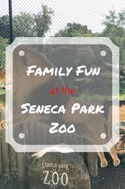 Tisch Family Zoological Gardens Best 25 Zoo Park Ideas On Pinterest Museums In Chicago Chicago