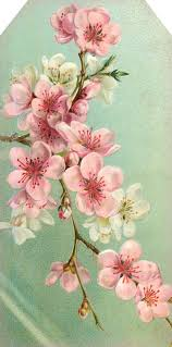 best 25 cherry blossom art ideas on pinterest cherry blossom