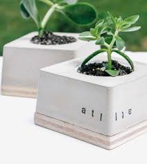 Modern Houseplants by Atl Modern Concrete Planter Home Decor U0026 Lighting Mdc