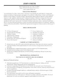 it director resume samples professional international it executive templates to showcase your resume templates international it executive