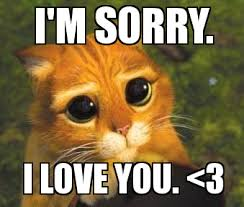 I Love You Meme For Her - i love you memes for him and her lifestyle pinterest mom cat