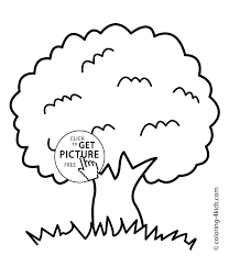 a picture of a tree coloring page free download