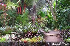World Botanical Gardens Botanical World Adventures Big Island