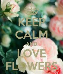 Flower And Love Quotes - keep calm and love flowers flower u0027s in the air pinterest