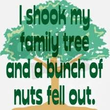 image gallery tree jokes