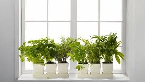 Window Sill Herb Garden Designs 45 Window Sill Decoration Ideas Original And Creative Design Ideas