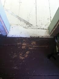 stripping wood floors need help katy elliott